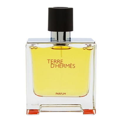 عطر مردانه هرمس Hermes Terre